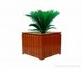 優質木花盆 5