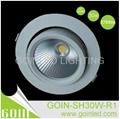 New design 30W LED Aluminum COB recessed