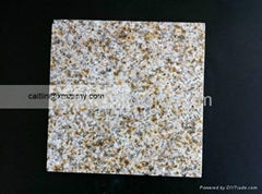 Yellow Rusty Granite Polished Tiles