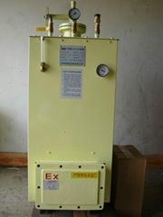 中邦CPEx(C)150kg/h电热式气化器