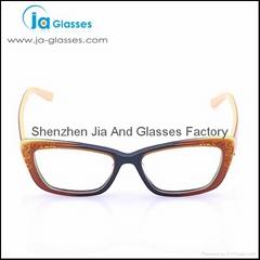 2014 Acetate European Style Eyeglasses