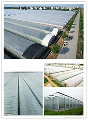 Agricultural Greenhouse Film