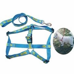 Professional Pet Leashes Pet Collar