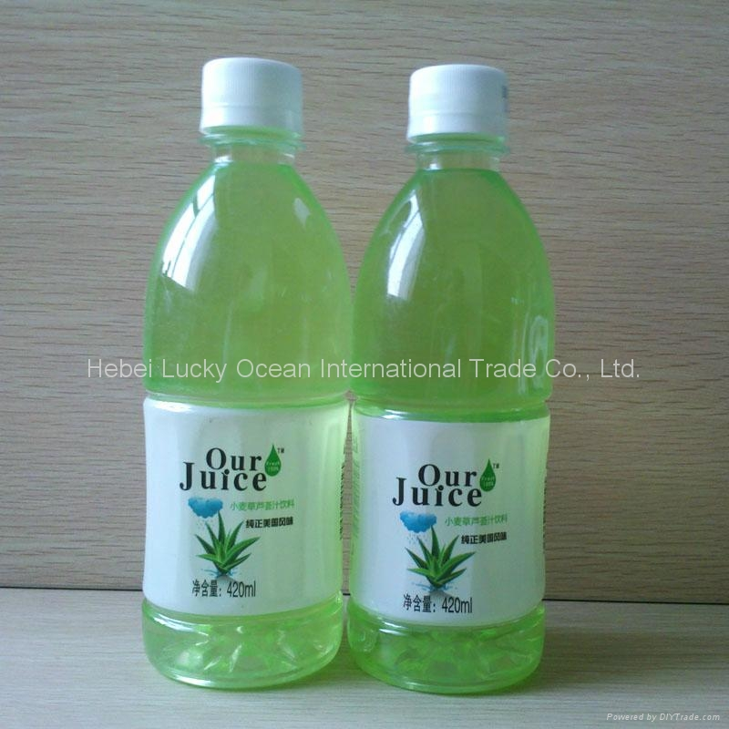 420ml PET package Aloe vera and fruit mixed juice drink 2