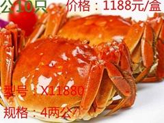 昆山九沐森阳澄湖大闸蟹X11880