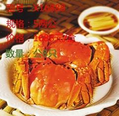 昆山九沐森阳澄湖大闸蟹X16888