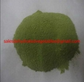Airing Dried China Factory Spinach Green