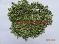 Dehydrated Spices Celery Leaf&Stalk(6:4)