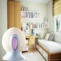 Mini Air Dehumidifier Dehumidifying Egg