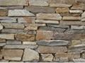 Cement Cultured Stone 5
