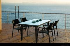 Rattan dining set  patio furniture
