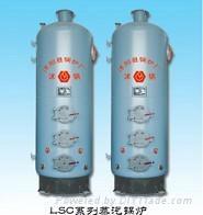 立式燃煤蒸汽锅炉 2