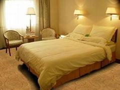 北海酒店地毯