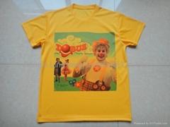 men 100%polyester dry fit sport t shirt