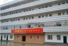 Hunan DIBOLO Decoration Materials Co.,Ltd