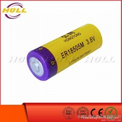 3.6V锂亚电池ER18505M