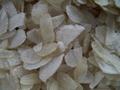 rice flakes white 2