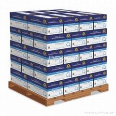 HammerMill Copy Plus Copy Paper  8.5 ich x 11 Inch  per Case