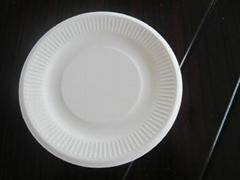 sugarcane bagasse plate