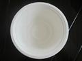 sugarcane bagasse bowl