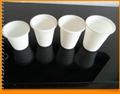 biodegradable disposable cornstarch cup 2