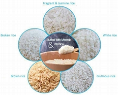 GLUTINOUS WHTIE RICE 10% BROKEN WITH COMPETITIVE PRICE