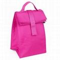 High quality 600D Oxford cooler bag  5