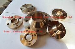 Copper Alloy Flange EEMUA 145/ANSI B16.5