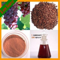Skin Care Grape Seeds Extract Powder Proanthocyanidins