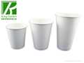 Corrugated Wall Paper Cup with Lids 5