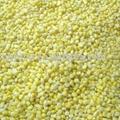 IQF/Frozen sweet corn kernels