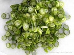 IQF/Frozen scallion/spring onion pieces
