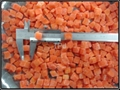 5 mm IQF/Frozen carrot dices