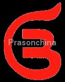 Shenzhen Prason Technology Co.,Ltd