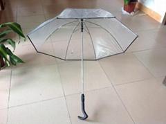 Auto open and close transparent umbrella