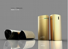 2013 hot sell protable  power bank