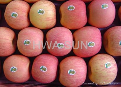 apple fuji 4