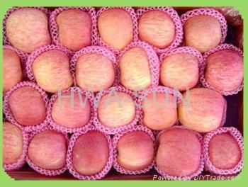 apple fuji 5
