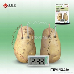 Potato clock science lab toy
