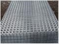 304不锈钢电焊网 4