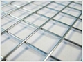 不锈钢丝焊接网 2