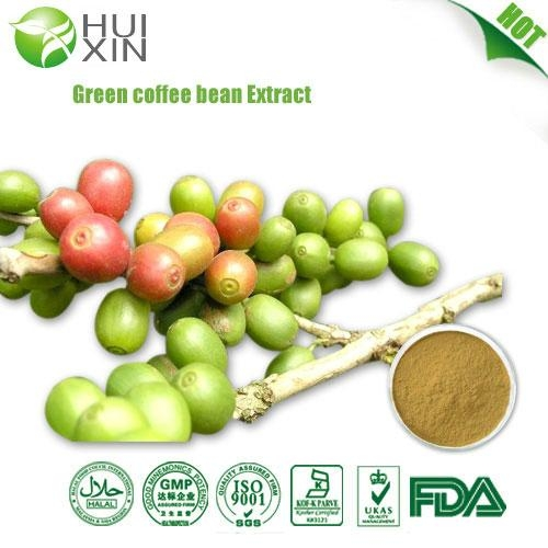 Green coffee bean Extract 30%,40%.50%  1