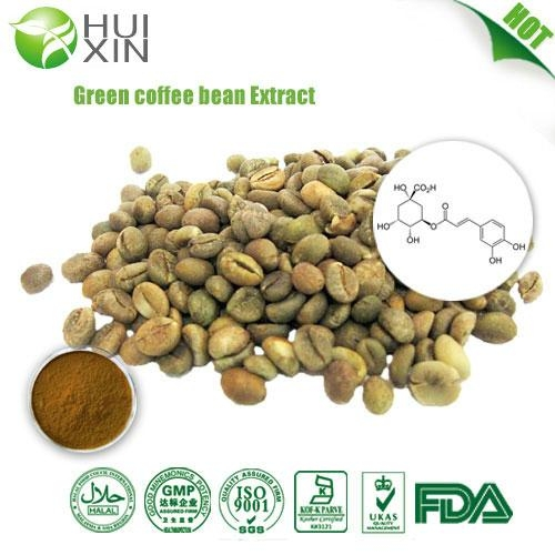 Green coffee bean Extract 30%,40%.50%  2
