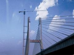 Tower crane QTZ5010