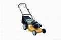 20'' Lawn Mower with CE and GS Certification 1