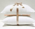 Poly Pillow (DPH6101)