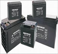 河北张家口大力神电池C&D12-100L
