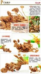 大山合特级干茶树菇干货