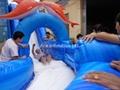 best design inflatable shark combo 2