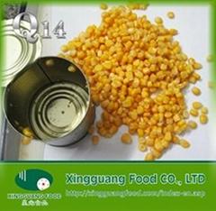 canned sweet corn 340/250 easy open